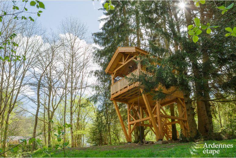 Ein echtes Baumhaus: Gönnen Sie sich ein einzigartiges Erlebnis!