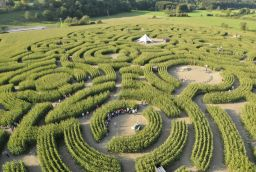 Labyrinth in Provinz Luxemburg