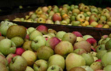 Siroperie artisanale Nyssen-Gastronomie bis Provinz Lüttich