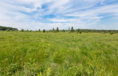 Das Hohe Venn-Sites naturels bis
