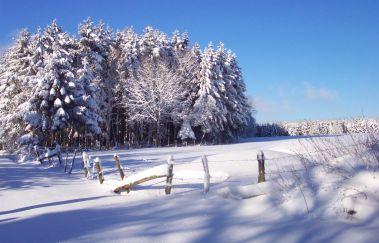Pistes de ski de Neu Perlé-Ski de fond bis Provinz Luxemburg